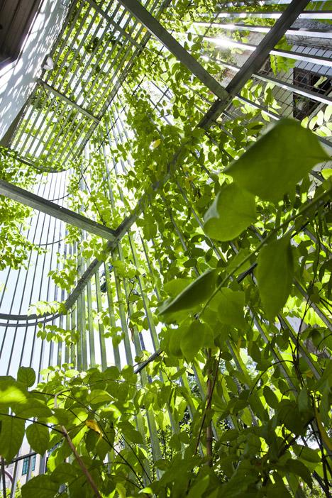 Phối cảnh mẫu thiết kế nhà ống đẹp 5 tầng rợp bóng cây xanh.02