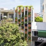 Căn nhà ống 3 tầng ấn tượng với cực nhiều cây xanh