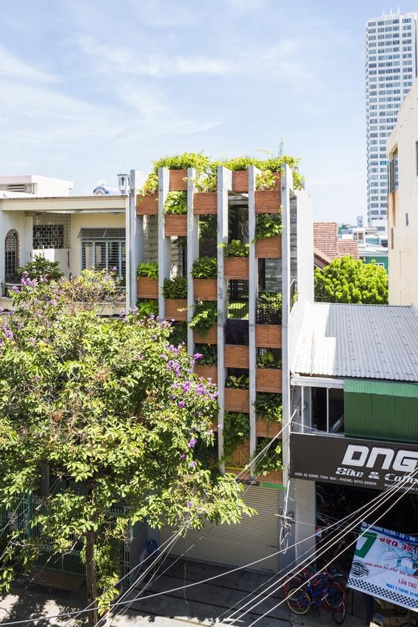 Ngắm nhìn căn nhà ống 3 tầng ấn tượng với cực nhiều cây xanh tại mặt tiền - 1