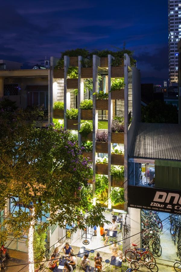 Ngắm nhìn căn nhà ống 3 tầng ấn tượng với cực nhiều cây xanh tại mặt tiền - 2