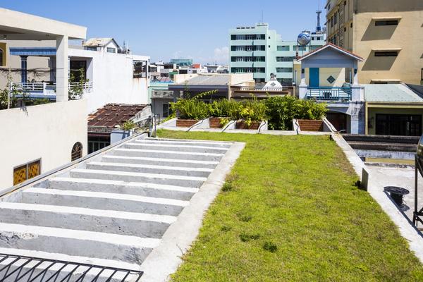 Ngắm nhìn căn nhà ống 3 tầng ấn tượng với cực nhiều cây xanh tại mặt tiền - 7
