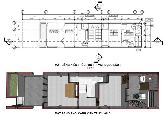 Mặt bằng công năng của mẫu thiết kế nhà ống đẹp 4 tầng xanh - 4