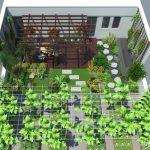 Thiết kế cây xanh vườn sân thượng trên mái nhà ống